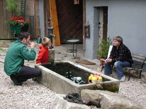 http://www.fordpflanzen.de/bilder/Knaupi/Vogesen2003/Bild03.JPG