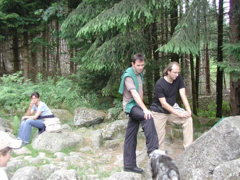 http://www.fordpflanzen.de/bilder/Knaupi/Vogesen2003/Bild09.JPG