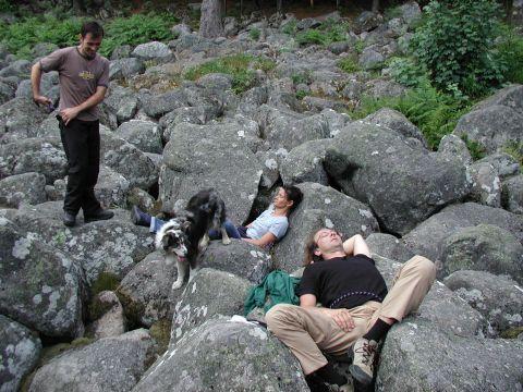 http://www.fordpflanzen.de/bilder/Knaupi/Vogesen2003/Bild12.JPG