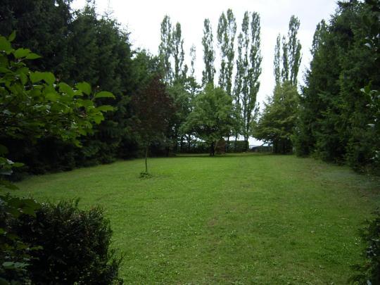 http://www.fordpflanzen.de/bilder/hermann/Greinhof/RIMG0036.JPG