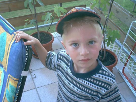 http://www.fordpflanzen.de/bilder/jflangley/Tobias.JPG