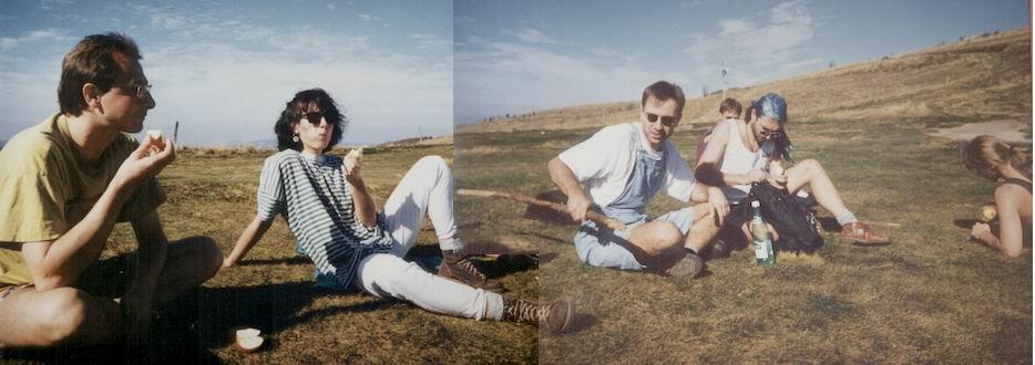 http://www.fordpflanzen.de/bilder/rolf/1995-Xonrupt/seite08-panorama.jpg