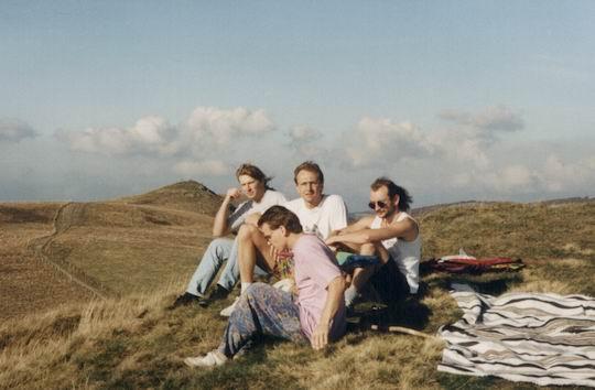 http://www.fordpflanzen.de/bilder/rolf/1995-Xonrupt/seite09-wind.jpg