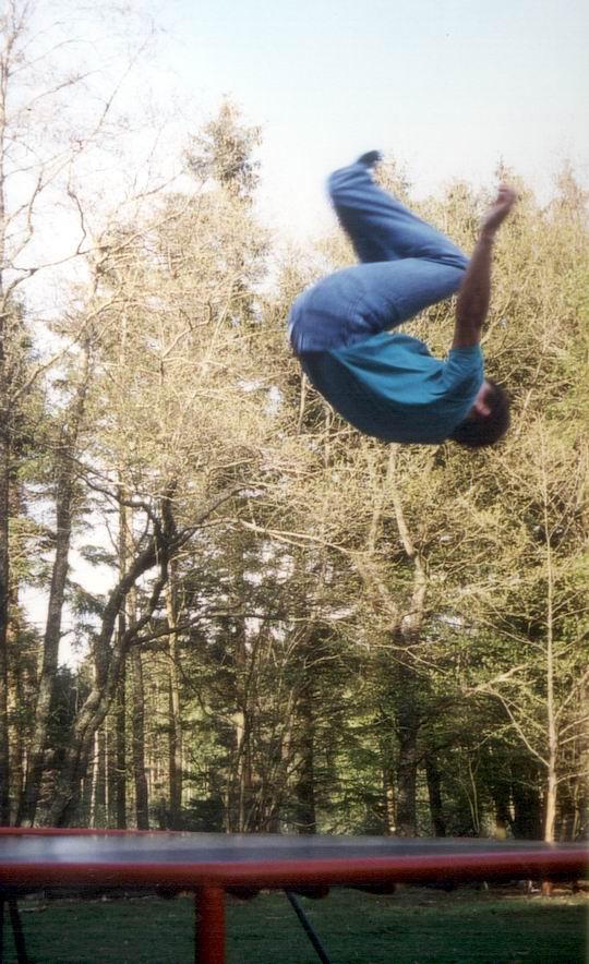 http://www.fordpflanzen.de/bilder/rolf/1996-Lac---KellAmSee/seite08-salto.jpg