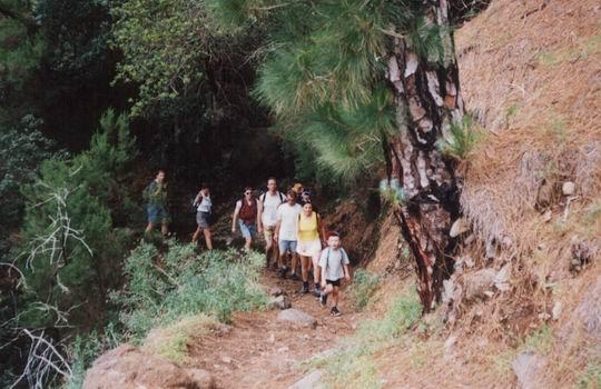 http://www.fordpflanzen.de/bilder/rolf/1998-LaPalma/seite17-wandern.jpg