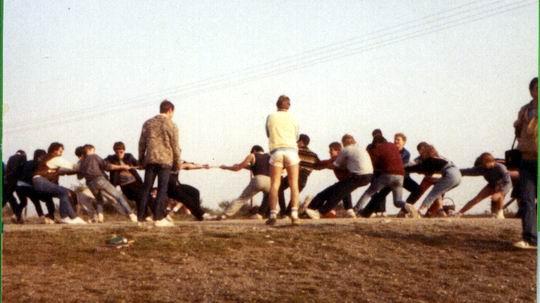 http://www.fordpflanzen.de/bilder/rolf/Ford-einzelbilder/1984-DerBeginn/seite07-ziehAn.jpg