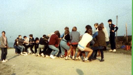 http://www.fordpflanzen.de/bilder/rolf/Ford-einzelbilder/1984-DerBeginn/seite07-ziehAn2.jpg