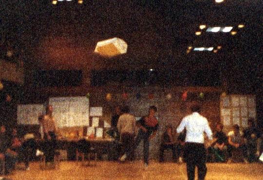 http://www.fordpflanzen.de/bilder/rolf/Ford-einzelbilder/1984-DerBeginn/seite09-dieterflieger.jpg