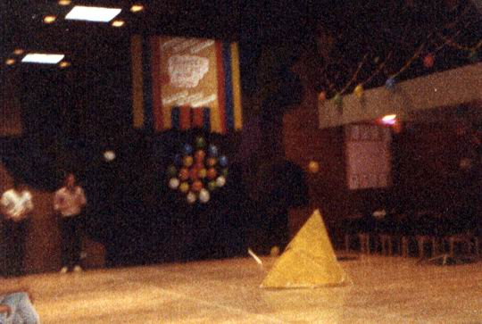http://www.fordpflanzen.de/bilder/rolf/Ford-einzelbilder/1984-DerBeginn/seite09-zielflug.jpg