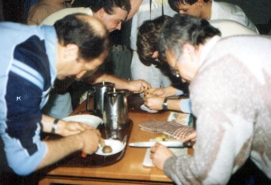 http://www.fordpflanzen.de/bilder/rolf/Ford-einzelbilder/1986/abw-seite04-kartoffeln.jpg