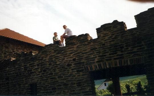 http://www.fordpflanzen.de/bilder/rolf/Ford-einzelbilder/1999-Leiwen/seite03-manu+rolf.jpg