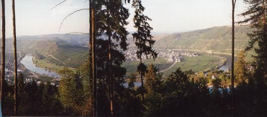 http://www.fordpflanzen.de/bilder/rolf/Ford-einzelbilder/1999-Leiwen/seite03-mosel.jpg