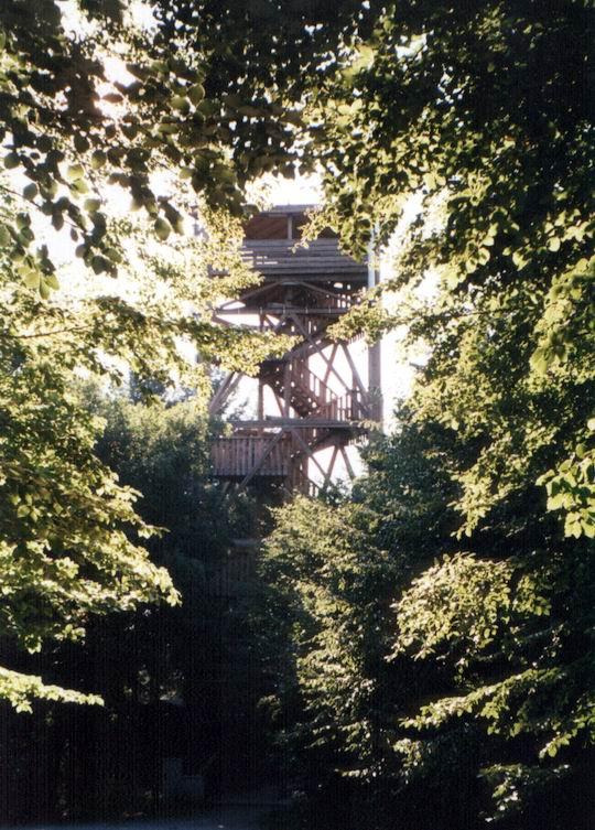 http://www.fordpflanzen.de/bilder/rolf/Ford-einzelbilder/1999-Leiwen/seite04-hochsitz.jpg