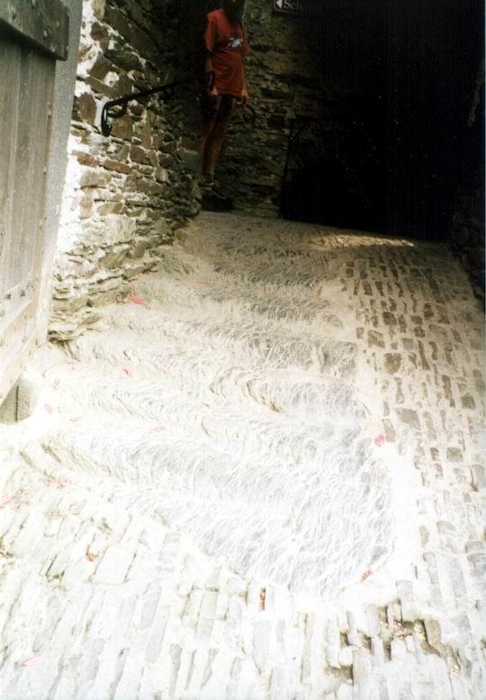 http://www.fordpflanzen.de/bilder/rolf/Ford-einzelbilder/1999-Leiwen/seite09-treppe.jpg