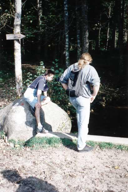 http://www.fordpflanzen.de/bilder/zottel/1995_XonruptLongemer/Serie2/16.jpg