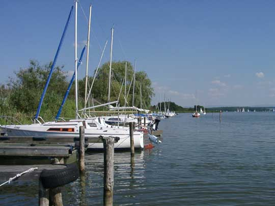 http://www.fordpflanzen.de/bilder/zottel/stockweiher/08170007.jpg